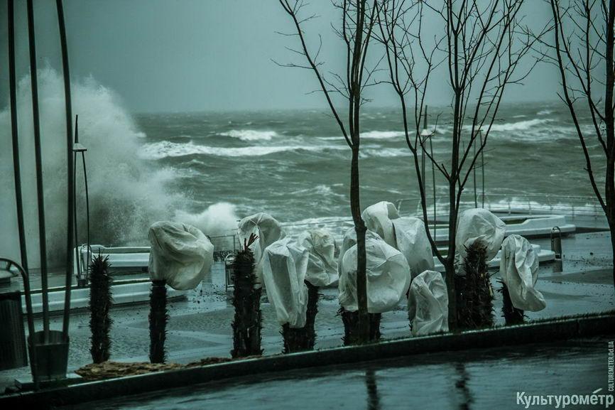 DSC04684_1 Красивые и опасные: на одесских пляжах пятиметровые волны