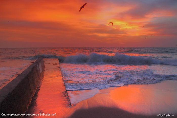 море, утро, одесский пляж